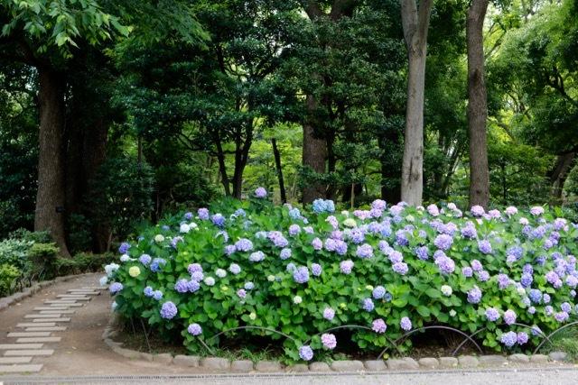 【東京メトロ 半蔵門線】part 1_f0348831_22363536.jpg