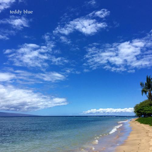 Lahaina, Maui  マウイ島 ラハイナ_e0253364_10511299.jpg