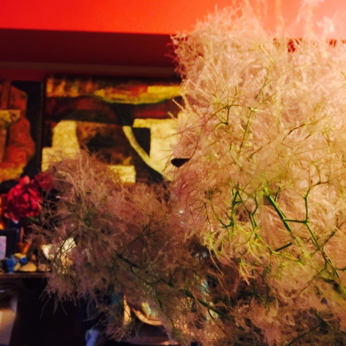 マニアに贈る  花束。_d0105967_19192347.jpeg