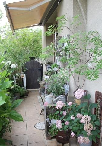◆Rochetさんの庭_e0154682_21263819.jpg