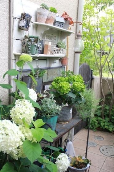 ◆Rochetさんの庭_e0154682_21323192.jpg