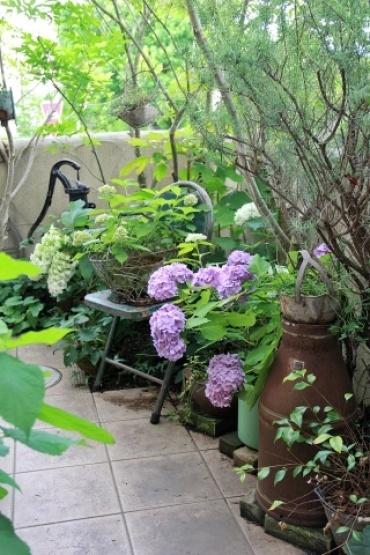 ◆Rochetさんの庭_e0154682_21325475.jpg