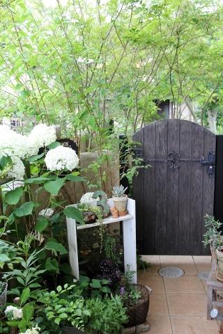 ◆Rochetさんの庭_e0154682_21335160.jpg