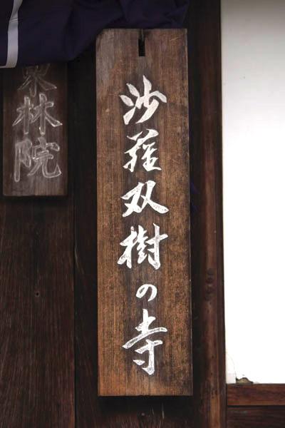 東林院(妙心寺塔頭)_e0051888_21201376.jpg