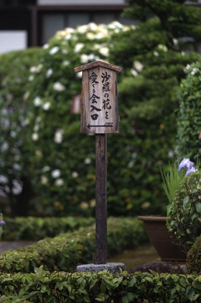 東林院(妙心寺塔頭)_e0051888_21202231.jpg
