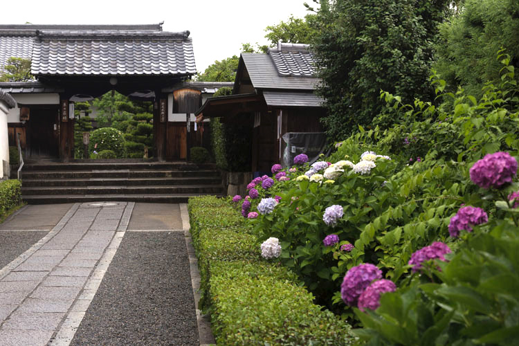 東林院(妙心寺塔頭)_e0051888_2120388.jpg