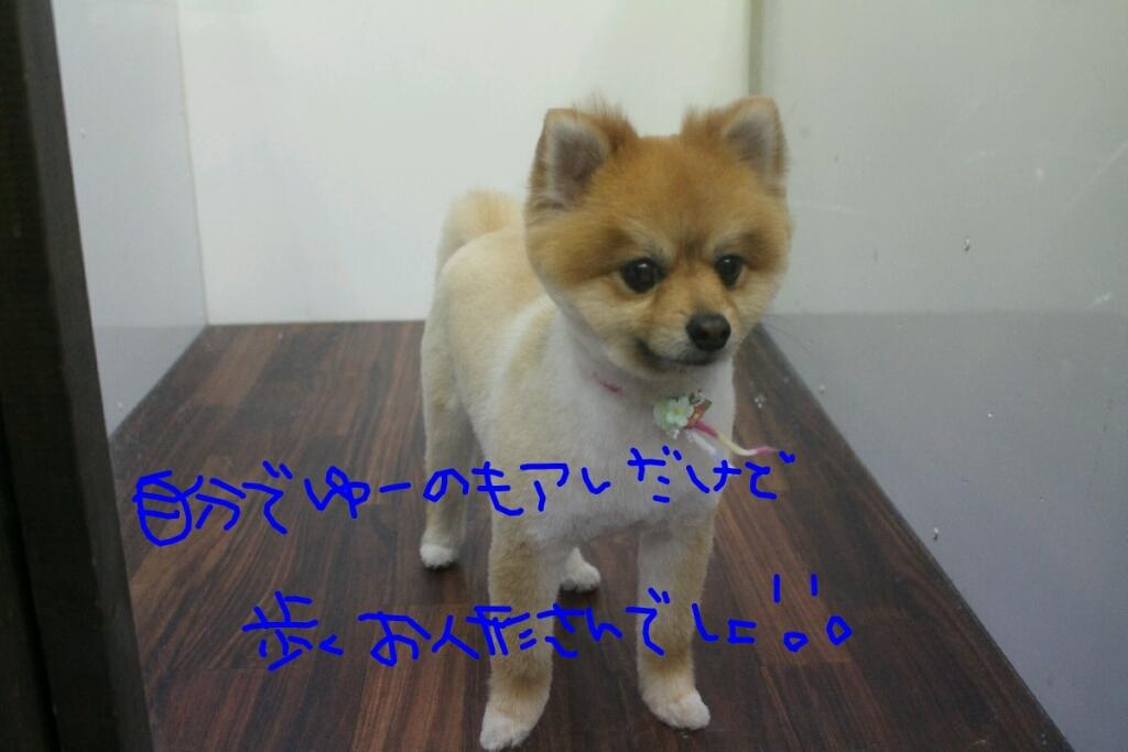 b0130018_12043166.jpg