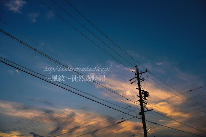 夏至の夕空。_f0235723_2175585.jpg