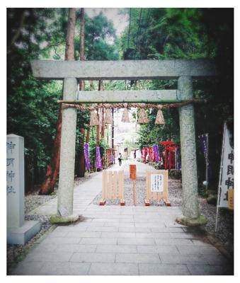 神社で前撮り_c0245240_15554091.jpg