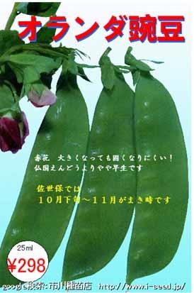 b0009849_156236.jpg