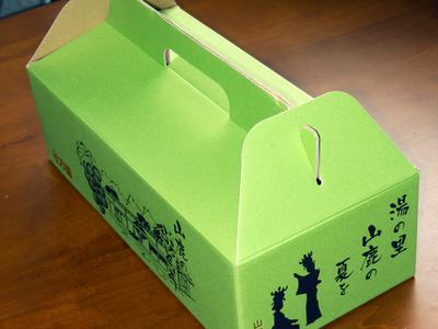 熊本ぶどう 高級種なしぶどう「山鹿のぶどう」 先行予約受付スタート!今年も7月7日より出荷いたします!_a0254656_18321795.jpg