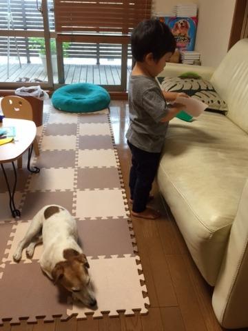 平和主義犬_d0143957_9494819.jpg