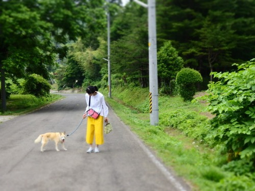 徒歩々遠足 果樹園にて_a0180681_1654696.jpg