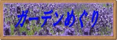 d0112650_17582684.jpg