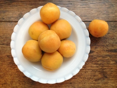 日光天然のかき氷 「杏」「パインバジル」登場しています!_a0221457_18102716.jpg