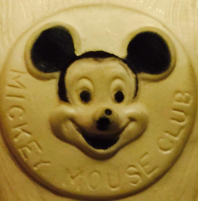 My Name is Minnie‼️    誰かなぁー‼️_d0105967_12340763.jpeg