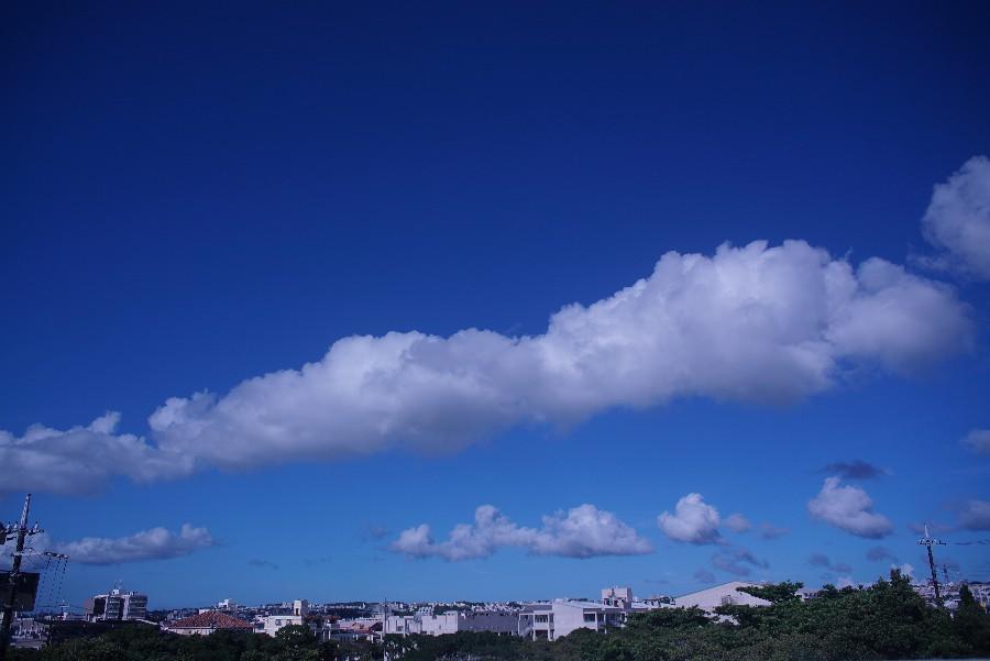 梅雨明けはスーパーハイコントラストな青空_a0095470_2355557.jpg