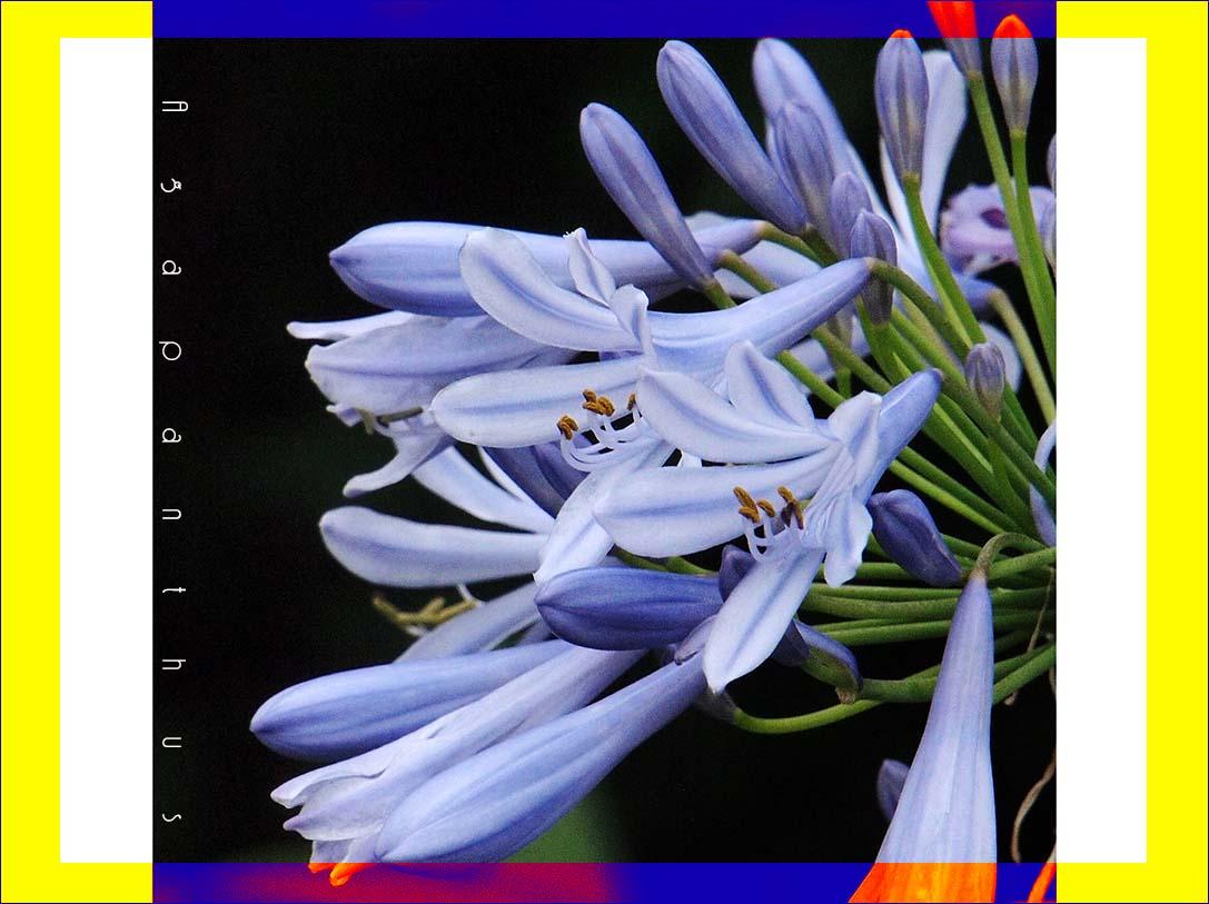 f0198771_23522031.jpg