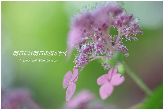f0361079_1930591.jpg