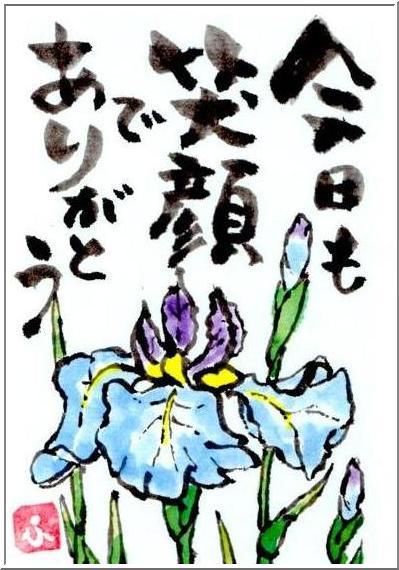 絵手紙・・・見納めの花菖蒲_b0104092_1775539.jpg