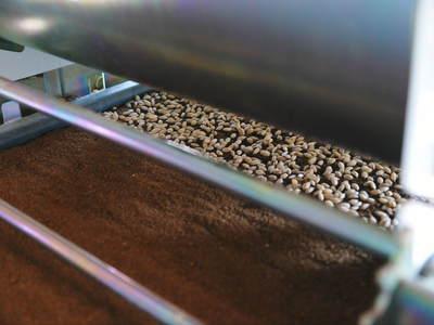七城米 長尾農園 苗箱作り~美しすぎる苗床 惜しまぬ手間ひまで至高のお米を育てます(前編)_a0254656_1759398.jpg