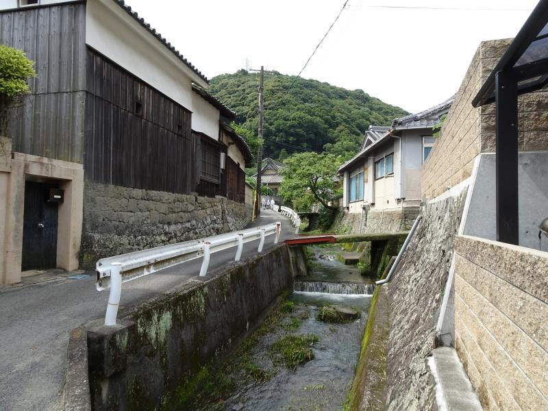 孝子の森にコクランが咲いた  by  (TATE-misaki)_c0108460_16315553.jpg