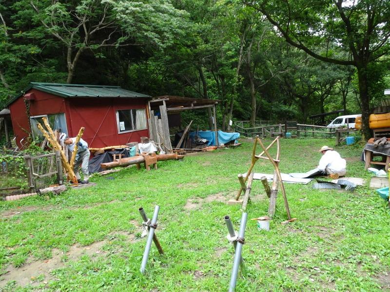 孝子の森にコクランが咲いた  by  (TATE-misaki)_c0108460_16400603.jpg