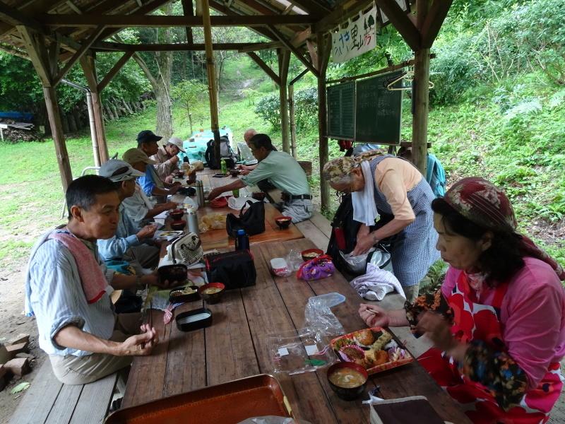 孝子の森にコクランが咲いた_c0108460_16420463.jpg