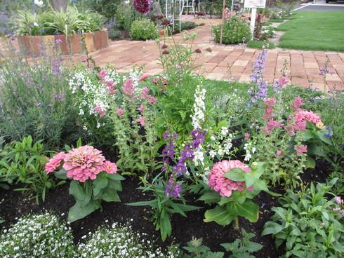 花壇の植え替え「夏~秋まで」たのしめるように_a0243064_18514587.jpg