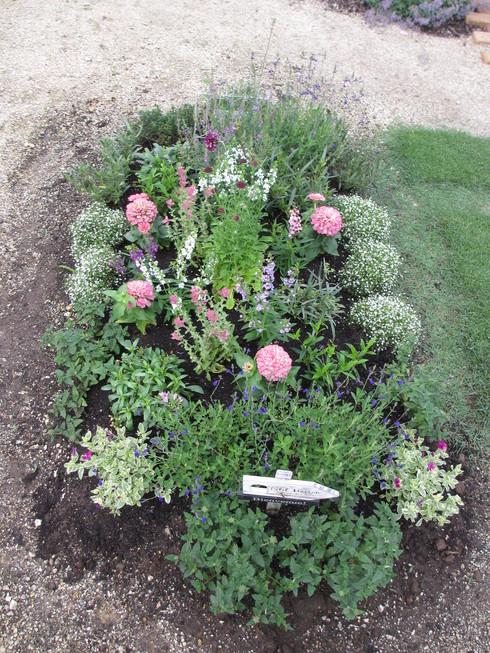 花壇の植え替え「夏~秋まで」たのしめるように_a0243064_8395410.jpg