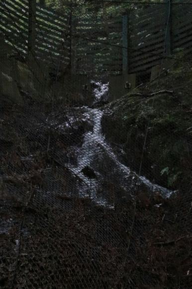 箕面大滝   大雨で出来た滝_d0202264_12144768.jpg