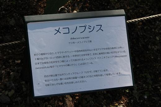 行ってきました。「百合が原公園」_f0362073_413851.jpg