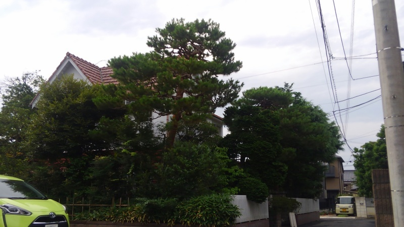 三笘修さんの展示1_f0351305_17285793.jpg
