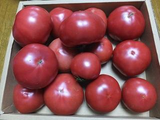 収穫とごはん_f0238106_1181295.jpg
