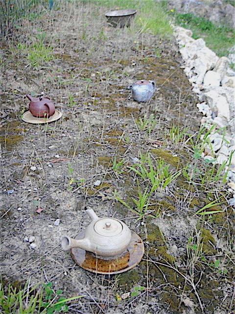 蚊と不毛  Le moustique et  la terre stérile _e0243221_5315638.jpg