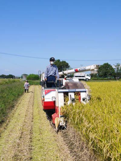 七城米 長尾農園 苗箱作り~美しすぎる苗床 惜しまぬ手間ひまで至高のお米を育てます(後編)_a0254656_16485771.jpg