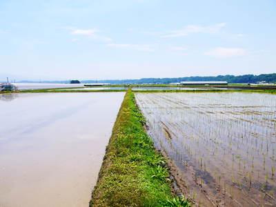 七城米 長尾農園 苗箱作り~美しすぎる苗床 惜しまぬ手間ひまで至高のお米を育てます(後編)_a0254656_17292335.jpg