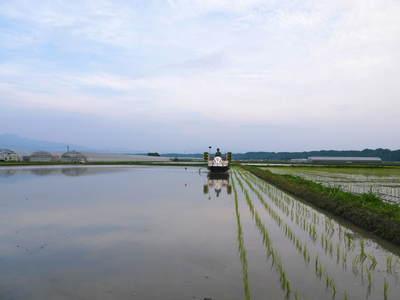 七城米 長尾農園 苗箱作り~美しすぎる苗床 惜しまぬ手間ひまで至高のお米を育てます(後編)_a0254656_17375036.jpg