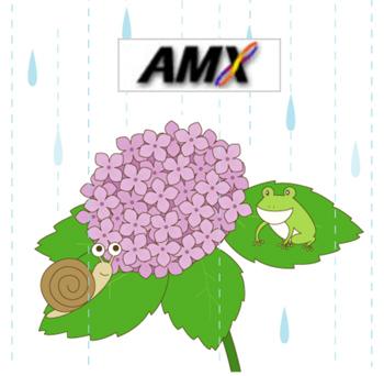 AMX。_b0044115_8133561.jpg