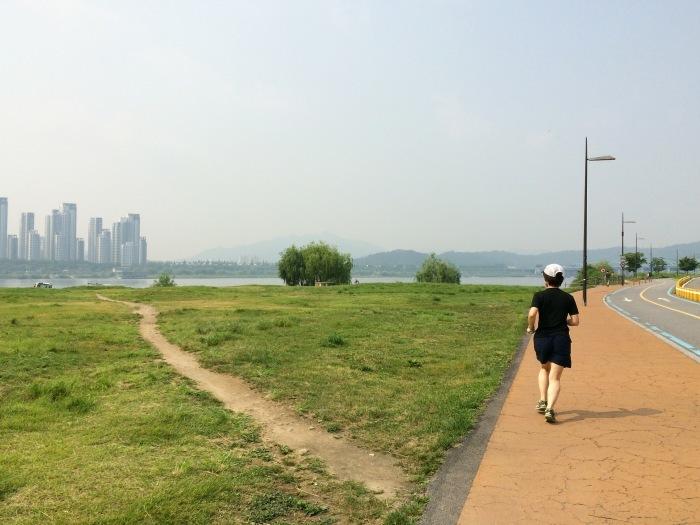 2016.6.16-19 SEOUL TRIP ~食べて呑んで走るソウルの旅~ day1-2_b0219778_18440300.jpg