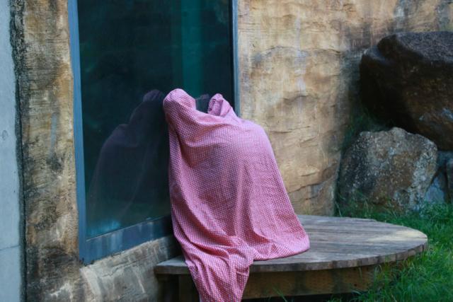【多摩動物公園】part 2_f0348831_08182305.jpg