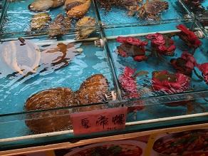 今世紀最大の謎!アモイの海珊瑚ってなんなの?_c0030645_2122221.jpg