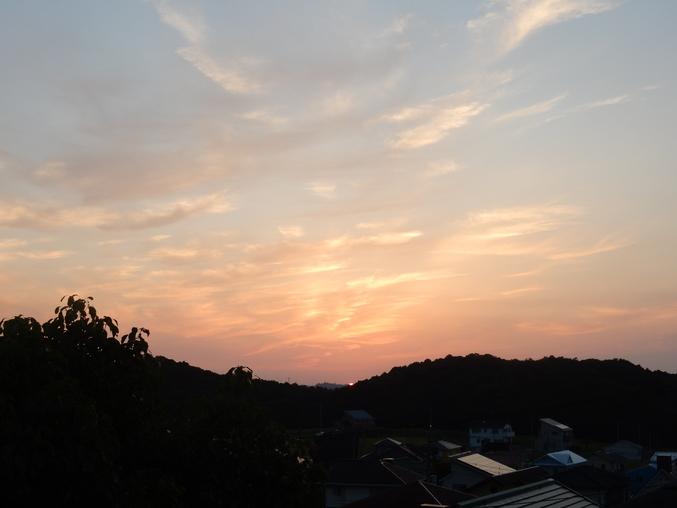 '16,6,27(月)日の出と心のハッスルと庭仕事!_f0060461_922222.jpg