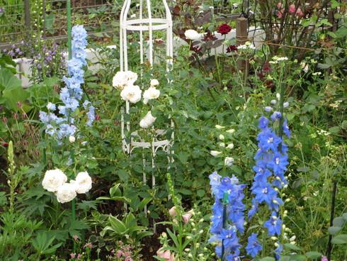 静寂の中の庭_a0243064_7411747.jpg