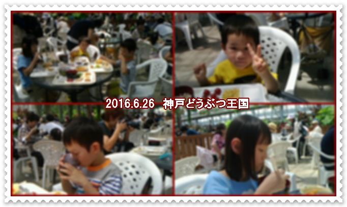 a0052666_141310.jpg