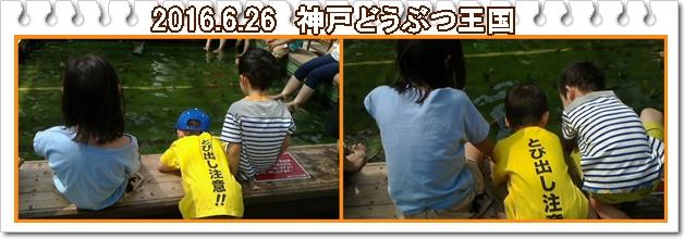 a0052666_161114.jpg