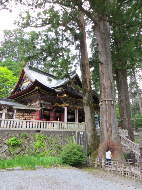 三峰神社と秩父神社へ_b0129807_17115065.jpg
