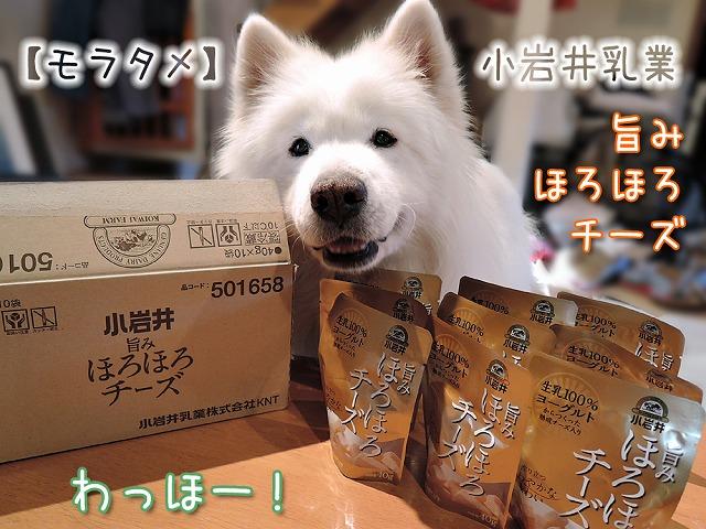 【モラタメ】 小岩井 旨みほろほろチーズ_c0062832_10173438.jpg
