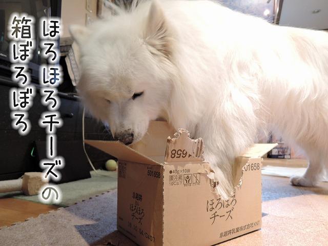 【モラタメ】 小岩井 旨みほろほろチーズ_c0062832_10181120.jpg