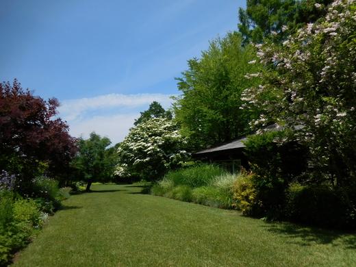 恵泉蓼科ガーデン、ミヨシ ペレニアルガーデンを訪ねて_f0139333_21102586.jpg